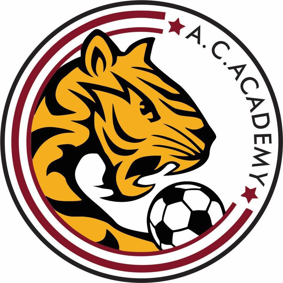 陳信安足球學校